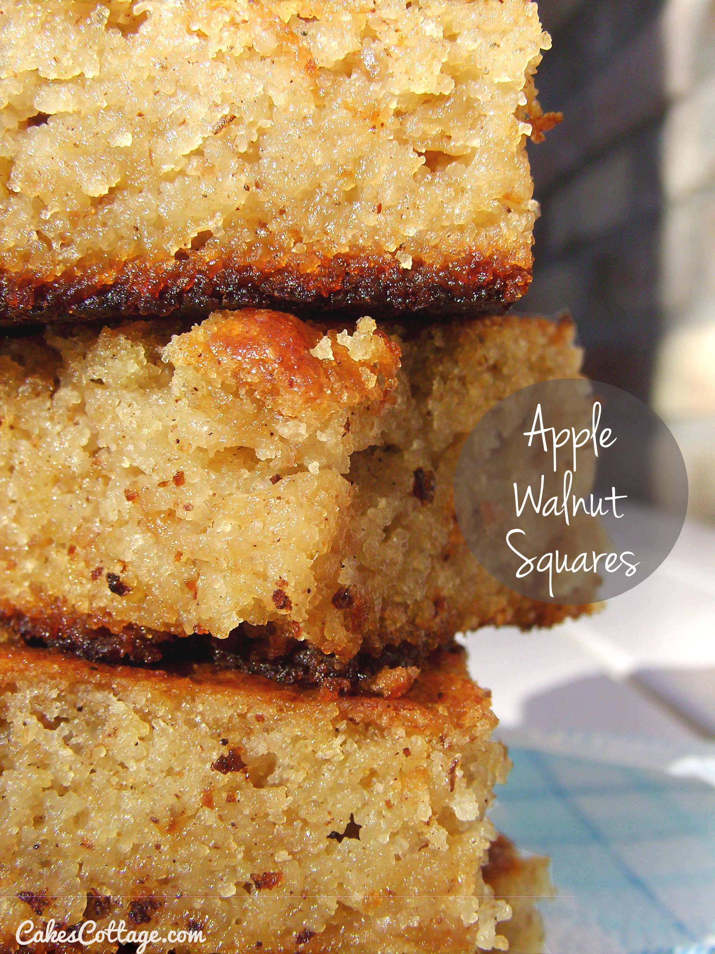 Apple-Walnut-Squares